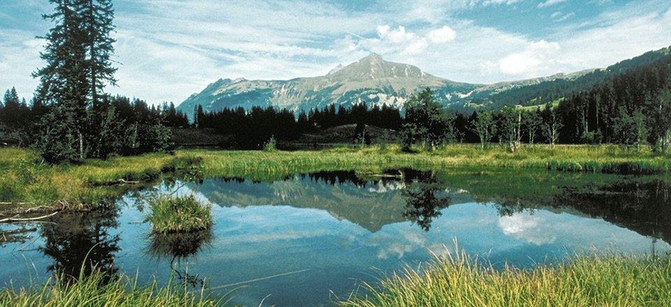 gstaad lauenensee berner oberland zwitserland my switzerland