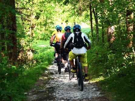 family active bled actieve gezinsvakantie slovenie julische alpen mountainbiking triglav national park 4