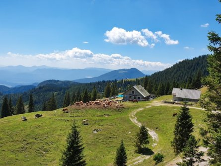 family active bled actieve gezinsvakantie slovenie julische alpen mini huttentocht šija scouts hut karawanken 2
