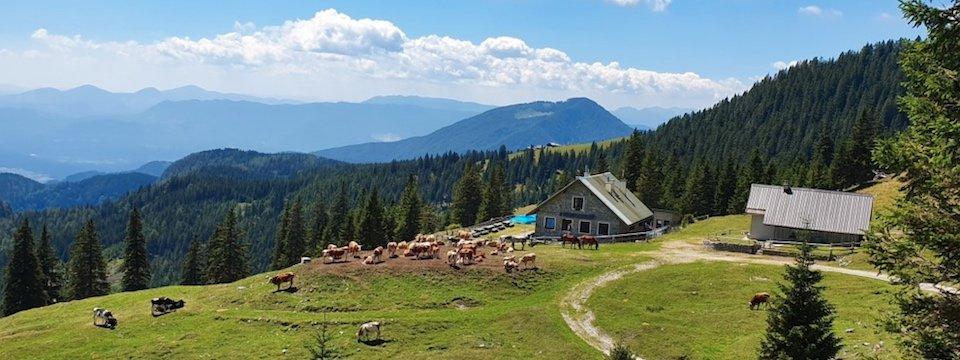 family active bled actieve gezinsvakantie slovenie julische alpen mini huttentocht šija scouts hut karawanken 1