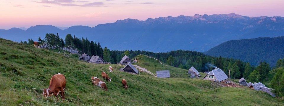 huttentocht julische alpen slovenie wandelen 13