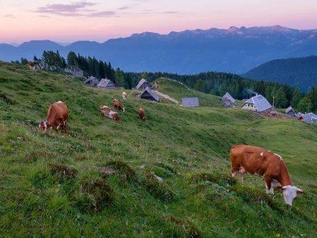 huttentocht julische alpen slovenie wandelen 14