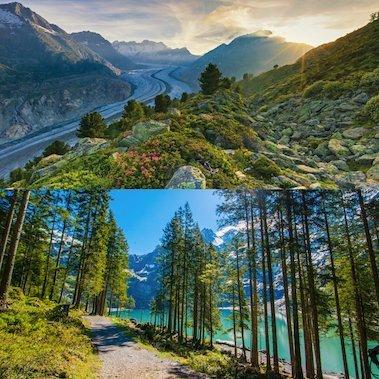 rondreis zwitserland puur natuur alpen autovakantie mooiste favoriete plekjes in de natuur alpenreizen (2)