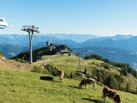 family active nassfeld karinthië avontuurlijke gezinsvakantie oostenrijk alpen wandeltocht nassfeld sommer bergwandern (daniel) zupanc)