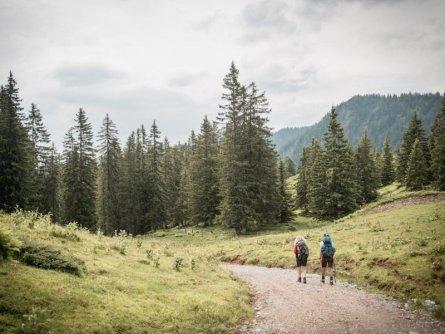 huttentocht gesause national park runde huttenrunde etappe 2 stage 2   ersten meter von mödlingerhütte nach johnsbach