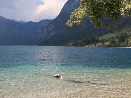 family active bled avontuurlijke gezinsvakantie slovenië zwemmen lake bohinj (tourismus bohinj) 1