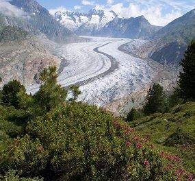 actieve vakanties aletsch gletsjertrekking