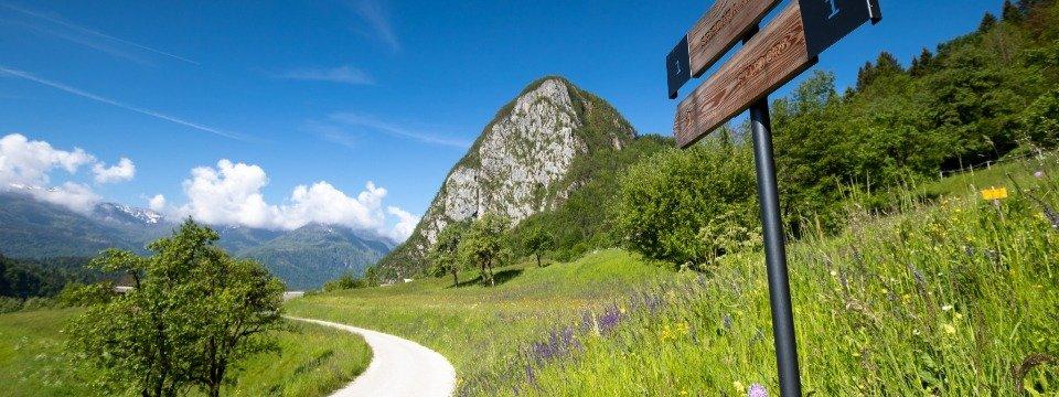 juliana trail etapa6 goreljek pokljuka stara fuzina 15 (mitja sodja)
